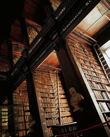 Shelves and shelves of books