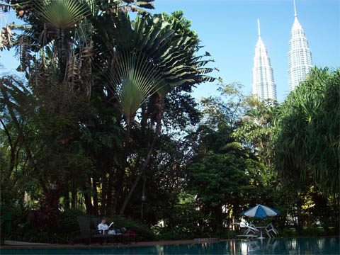 Reading by the Pool in KL