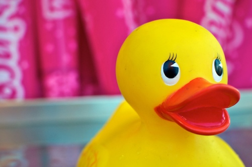 "A rubber ducky asking himself ""What if I were a writer?"" Well, that's what it looks like to *me* anyway."